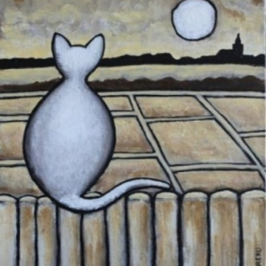 Chat observant les marais de Guérande