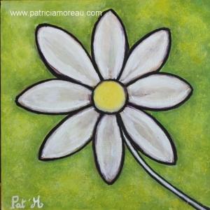 Fleur Maguerite blanche sur fond vert